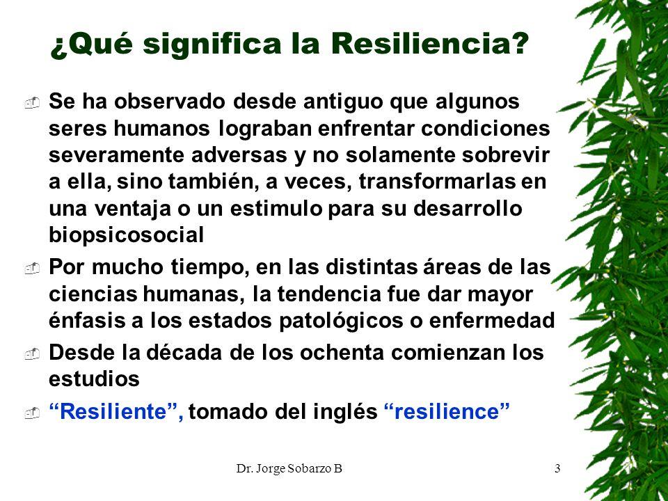 ¿Qué significa la Resiliencia