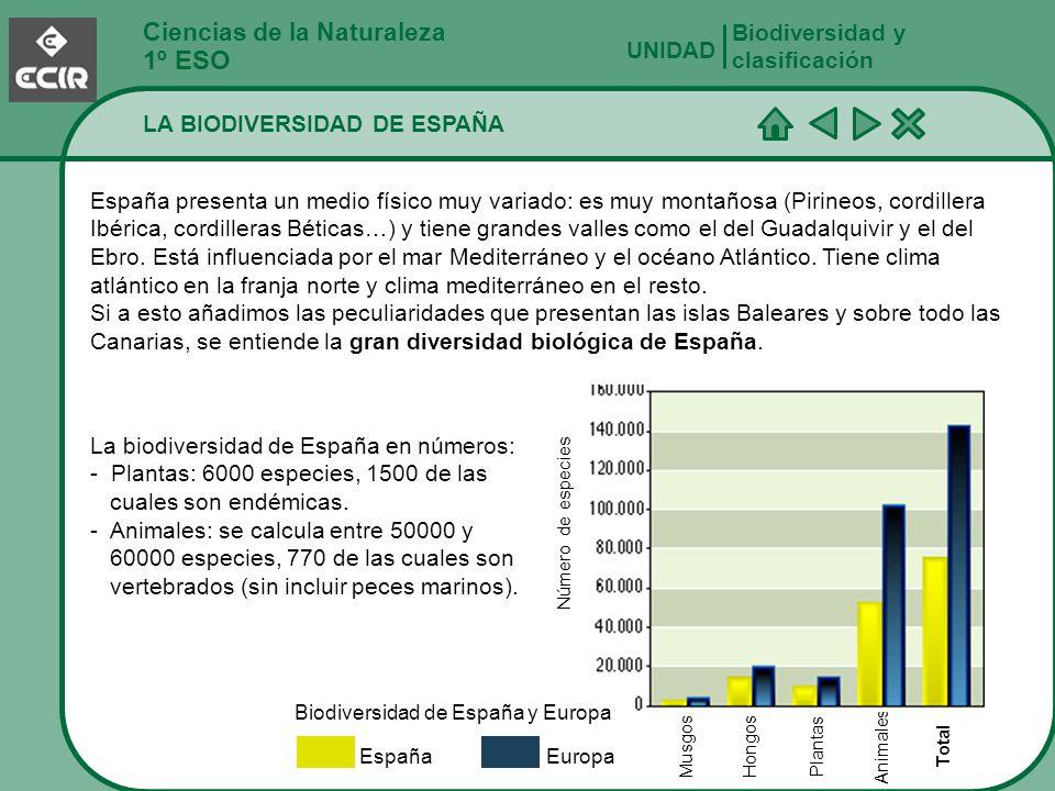 Biodiversidad de España y Europa
