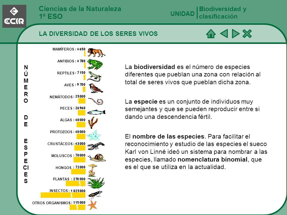 1º ESO Ciencias de la Naturaleza Biodiversidad y clasificación UNIDAD