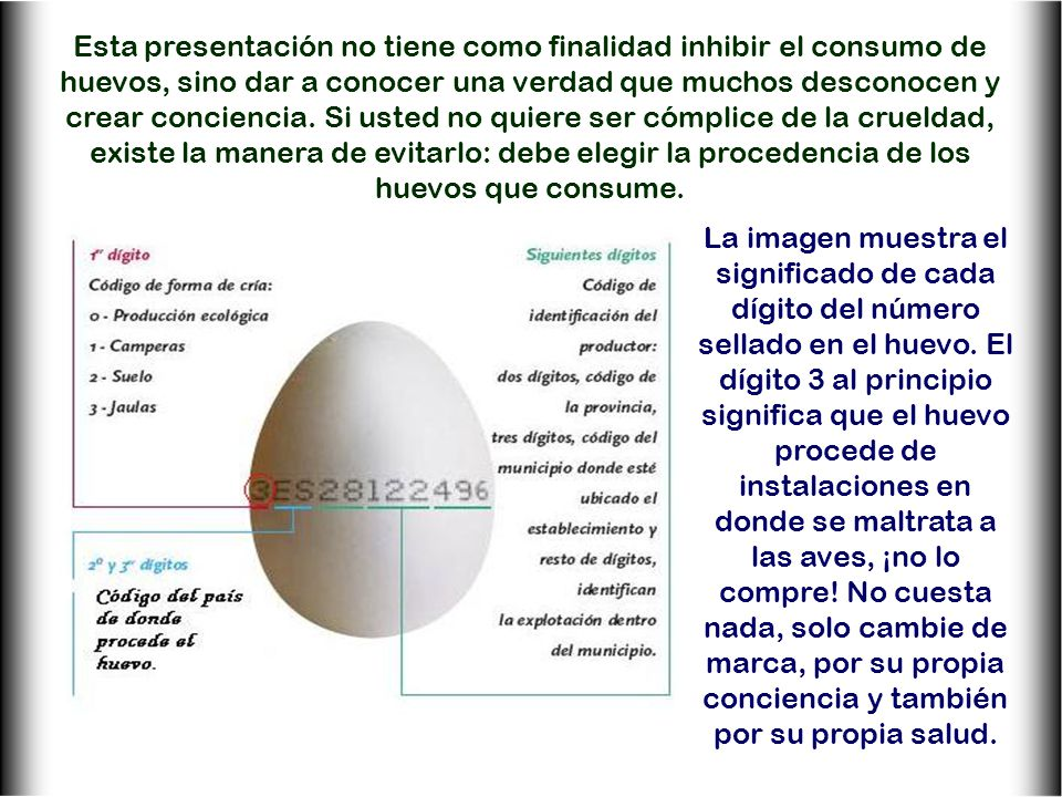 Esta presentación no tiene como finalidad inhibir el consumo de huevos, sino dar a conocer una verdad que muchos desconocen y crear conciencia. Si usted no quiere ser cómplice de la crueldad, existe la manera de evitarlo: debe elegir la procedencia de los huevos que consume.