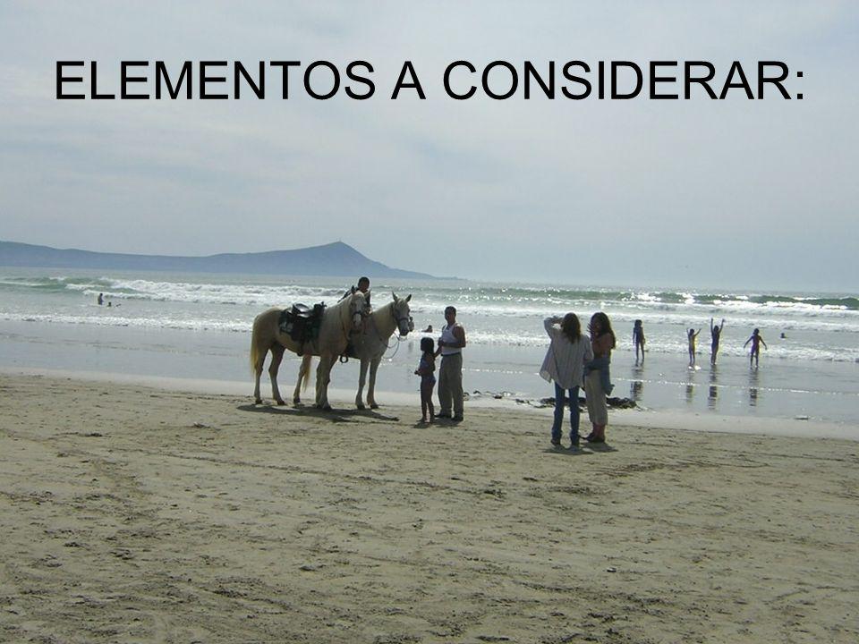 ELEMENTOS A CONSIDERAR:
