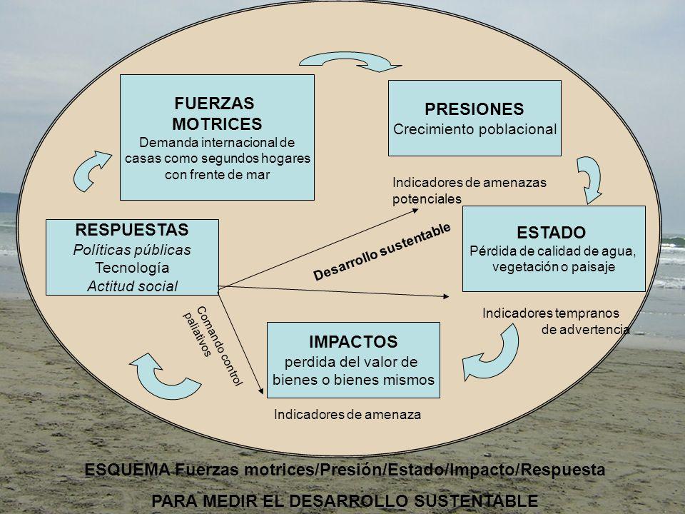 ESQUEMA Fuerzas motrices/Presión/Estado/Impacto/Respuesta