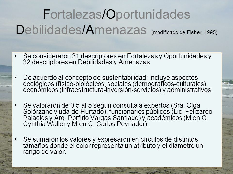 Fortalezas/Oportunidades Debilidades/Amenazas (modificado de Fisher, 1995)