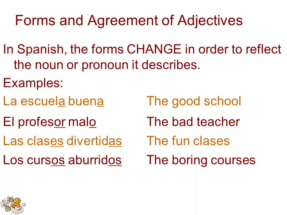 Forms and Agreement of Adjectives
