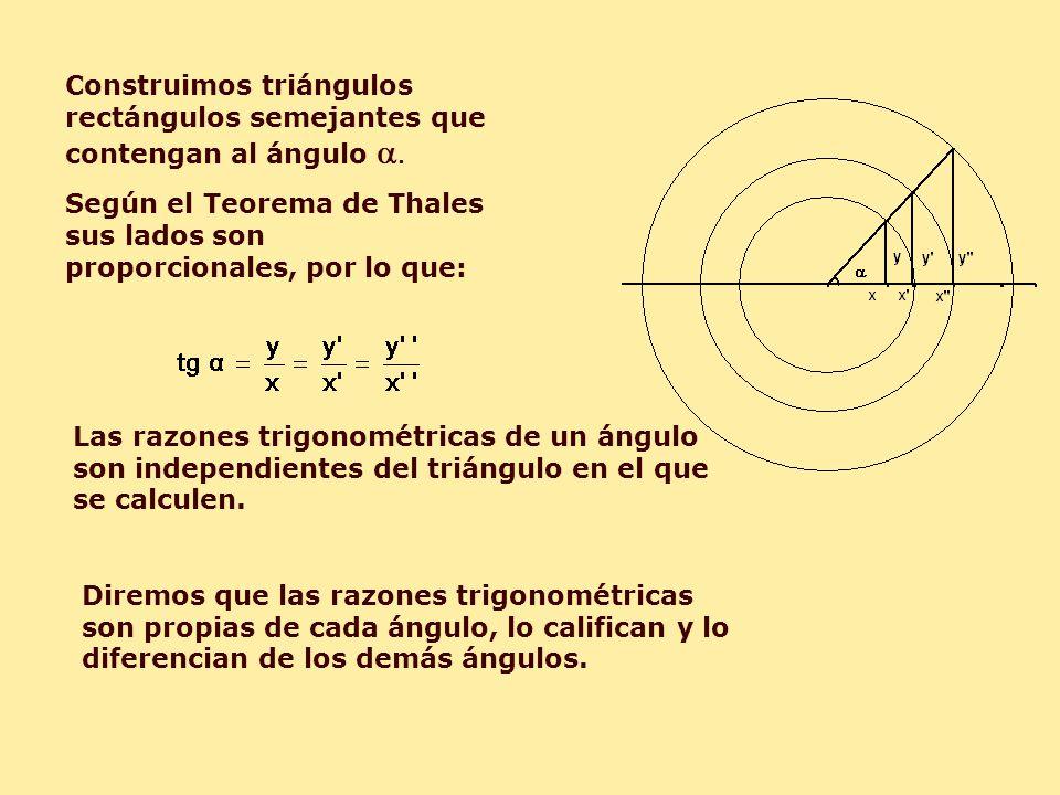 Construimos triángulos rectángulos semejantes que contengan al ángulo a.