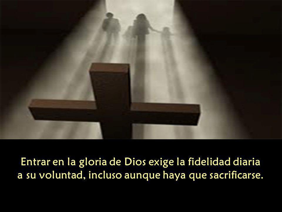 Entrar en la gloria de Dios exige la fidelidad diaria a su voluntad, incluso aunque haya que sacrificarse.
