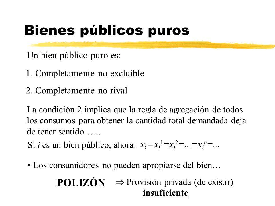 Bienes públicos puros Un bien público puro es: POLIZÓN