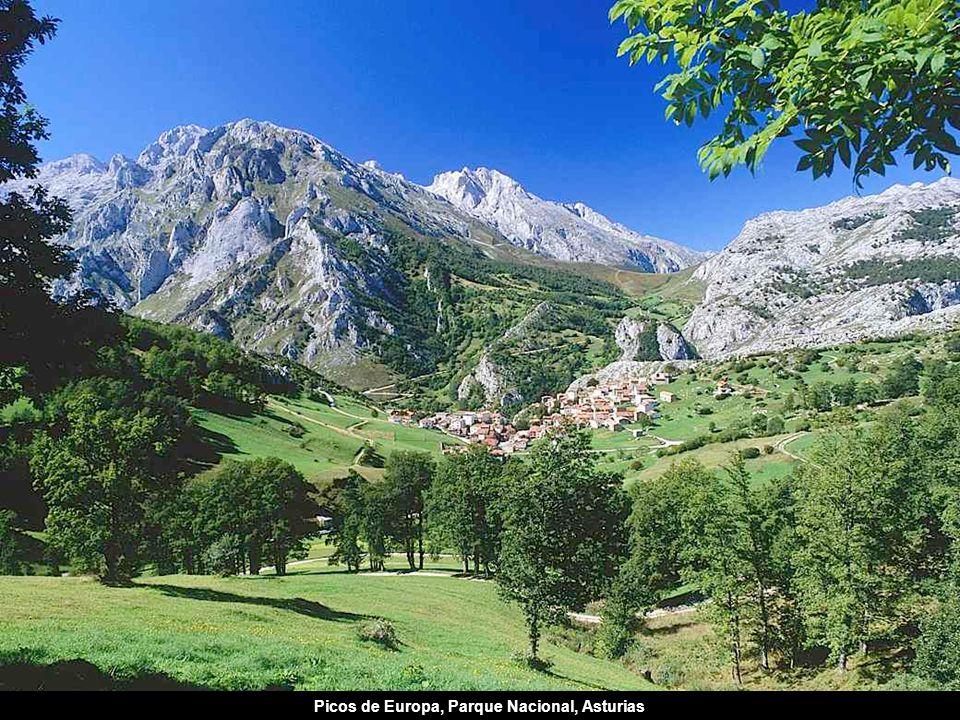 Picos de Europa, Parque Nacional, Asturias