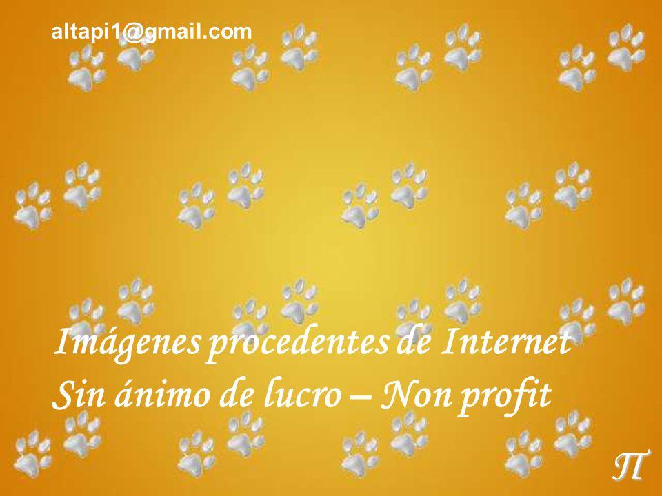Imágenes procedentes de Internet Sin ánimo de lucro – Non profit