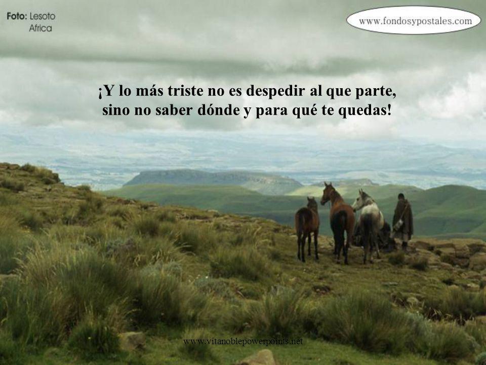 ¡Y lo más triste no es despedir al que parte, sino no saber dónde y para qué te quedas!