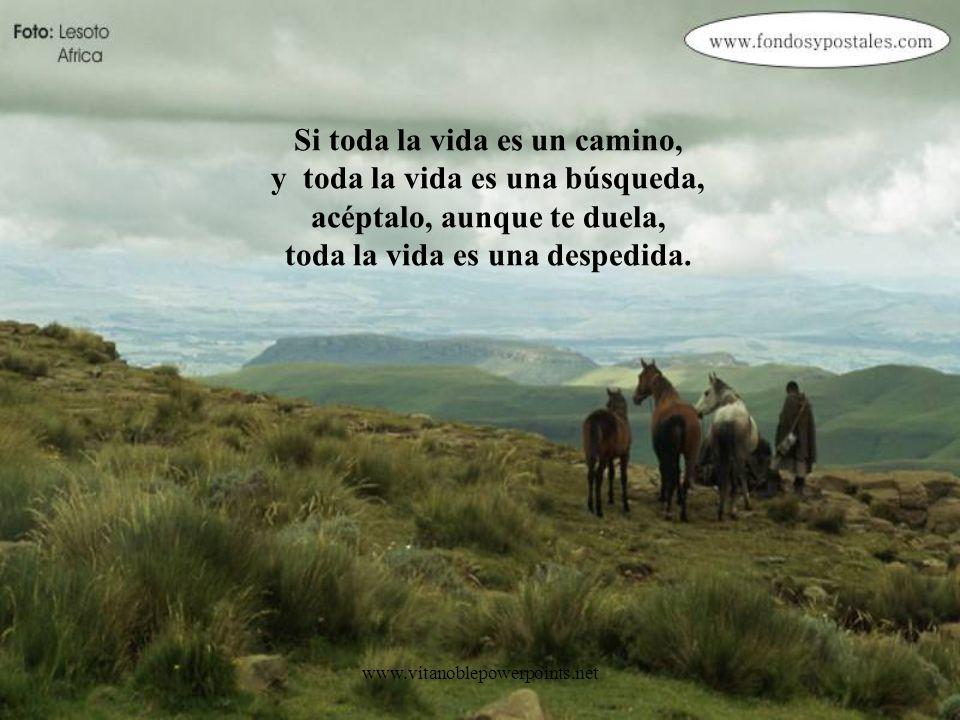 Si toda la vida es un camino, y toda la vida es una búsqueda, acéptalo, aunque te duela, toda la vida es una despedida.