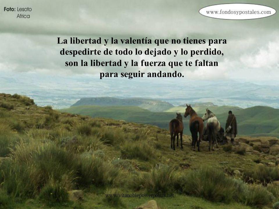 La libertad y la valentía que no tienes para despedirte de todo lo dejado y lo perdido, son la libertad y la fuerza que te faltan para seguir andando.