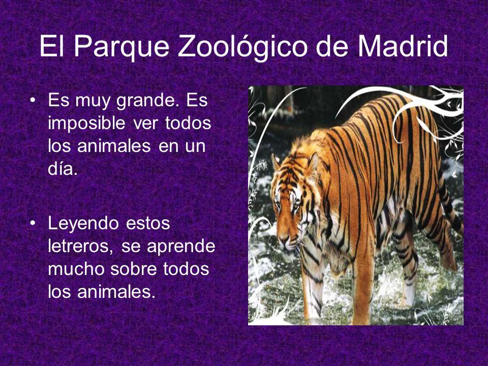 El Parque Zoológico de Madrid