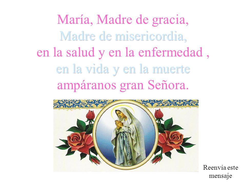 María, Madre de gracia, Madre de misericordia, en la salud y en la enfermedad , en la vida y en la muerte ampáranos gran Señora.