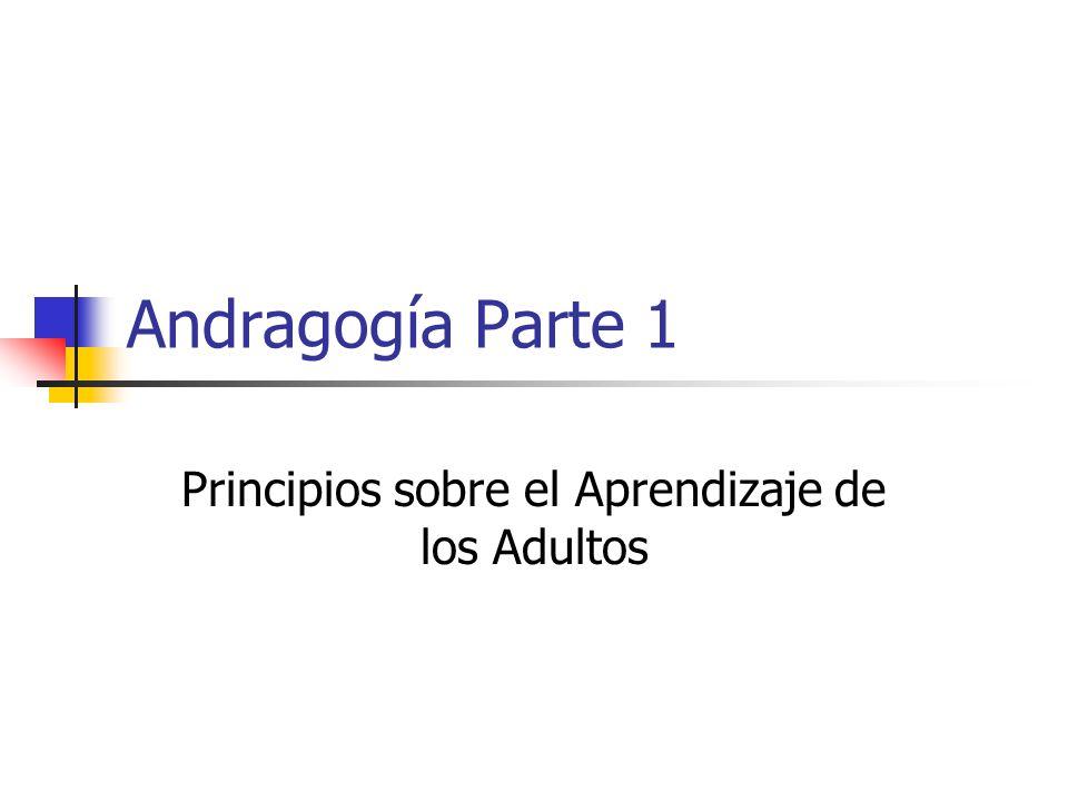 Principios sobre el Aprendizaje de los Adultos