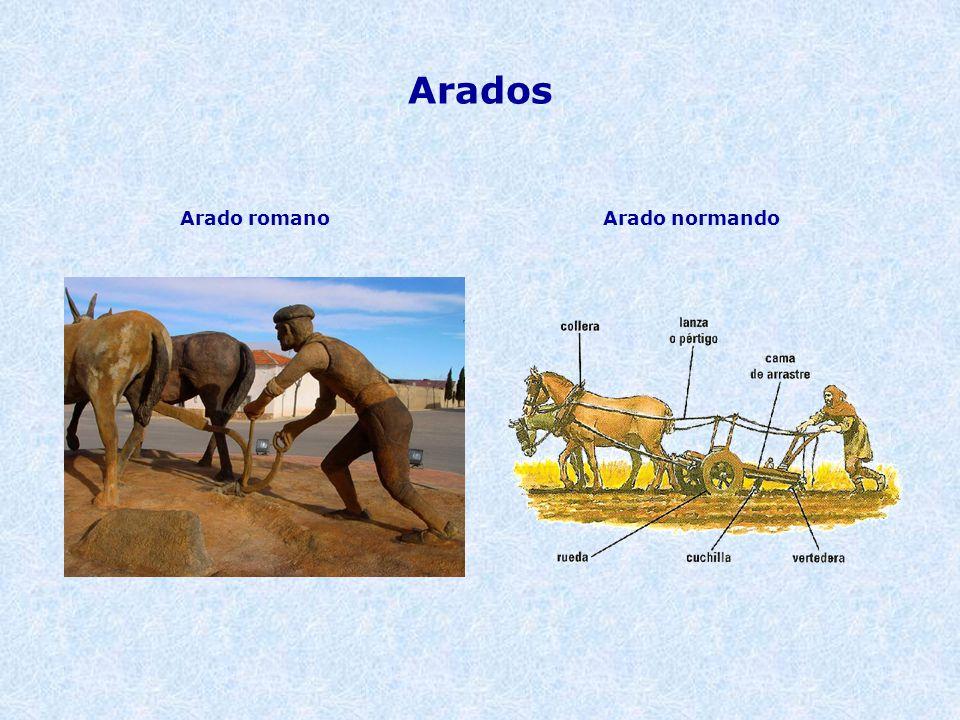 Arados Arado romano Arado normando