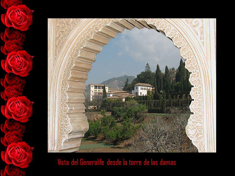 Vista del Generalife desde la torre de las damas