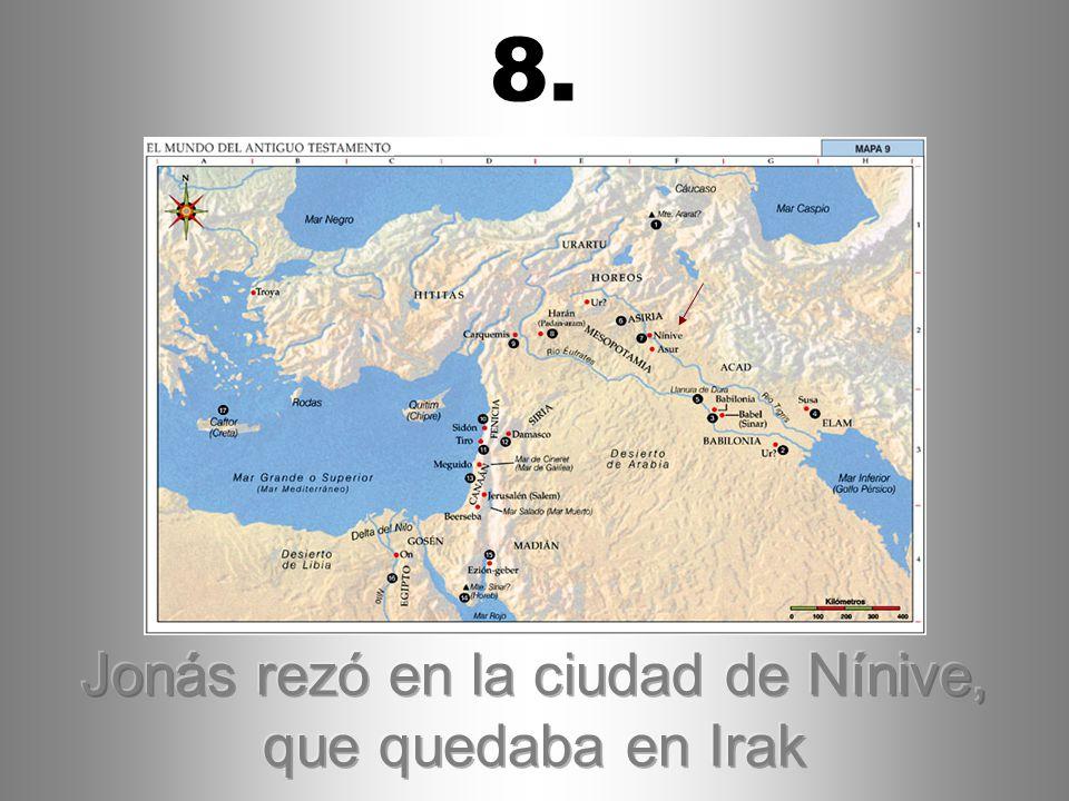 Jonás rezó en la ciudad de Nínive, que quedaba en Irak