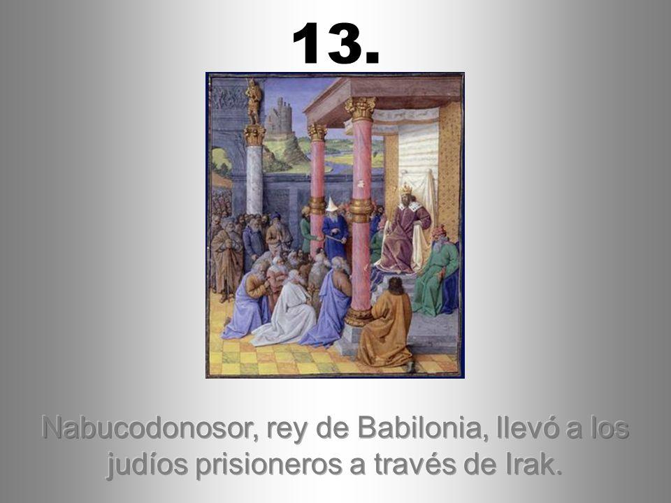13. Nabucodonosor, rey de Babilonia, llevó a los judíos prisioneros a través de Irak.