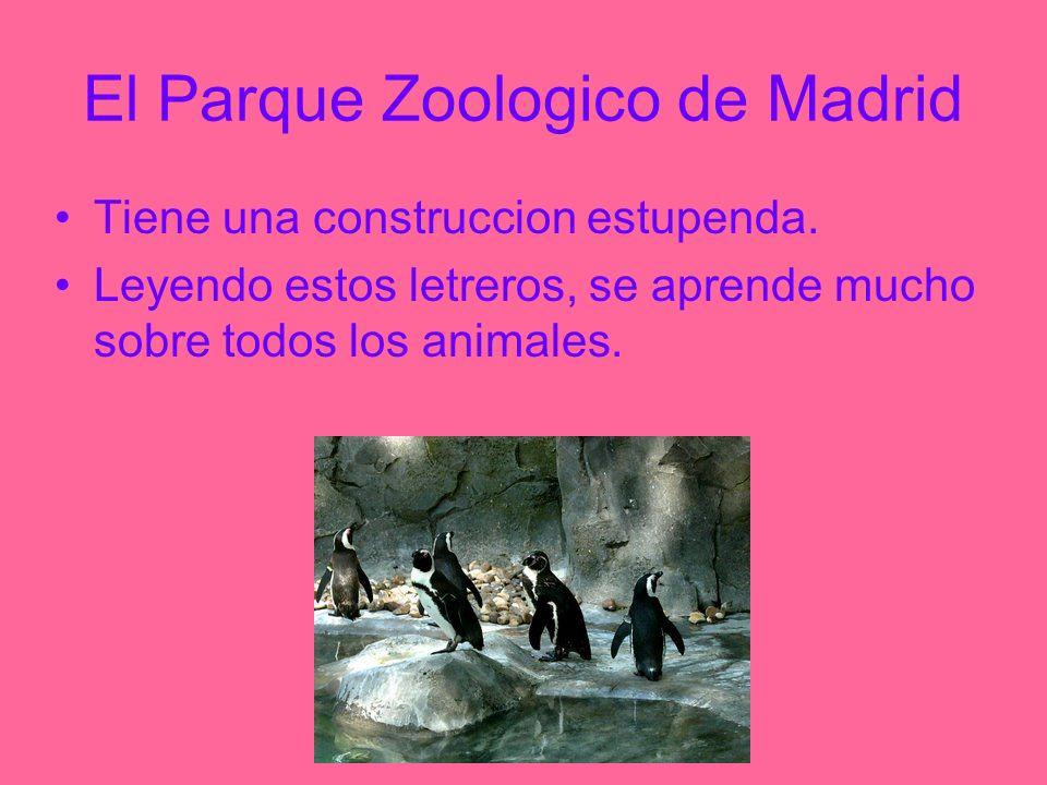 El Parque Zoologico de Madrid