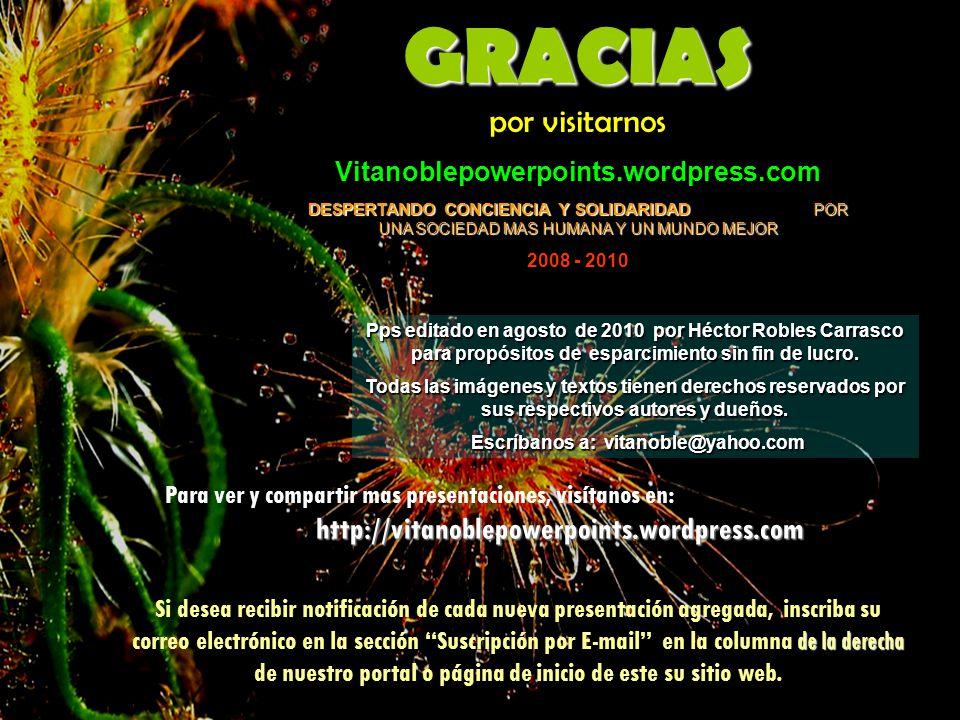 Escríbanos a: vitanoble@yahoo.com
