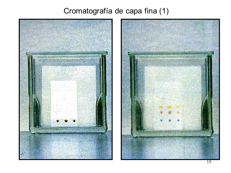 Cromatografía de capa fina (1)