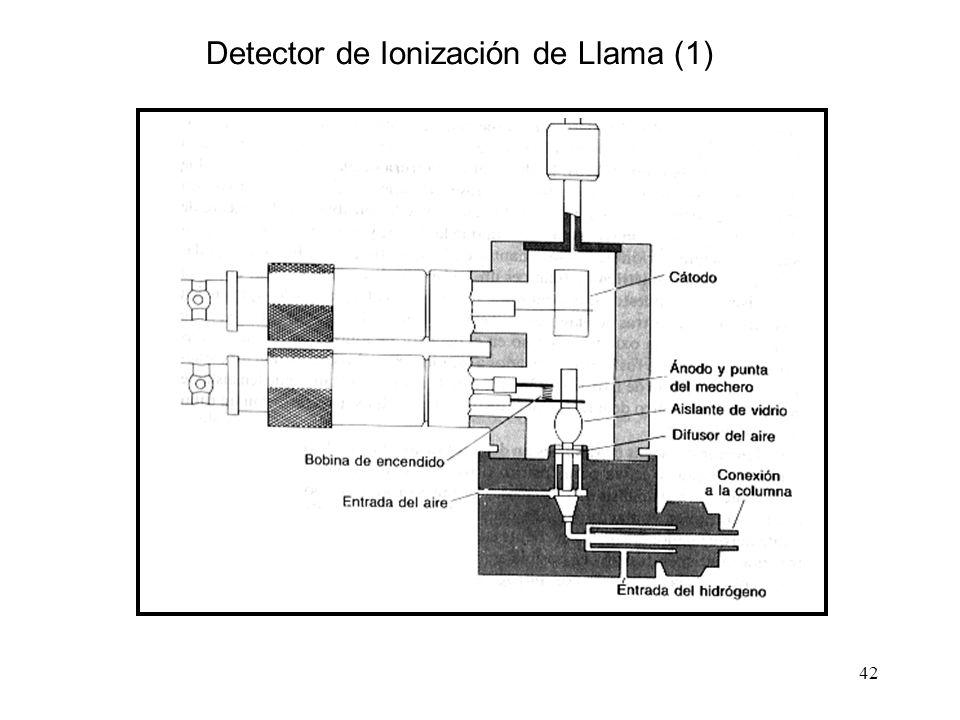Detector de Ionización de Llama (1)