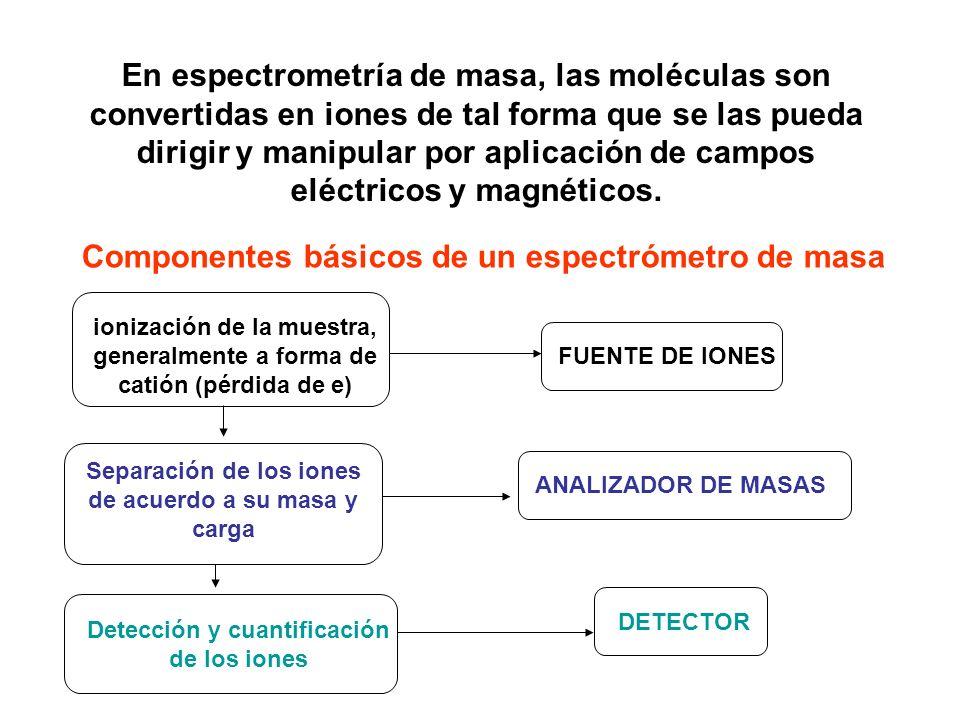 Componentes básicos de un espectrómetro de masa