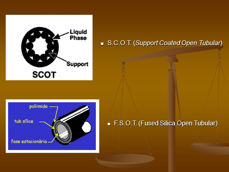 S.C.O.T. (Support Coated Open Tubular)
