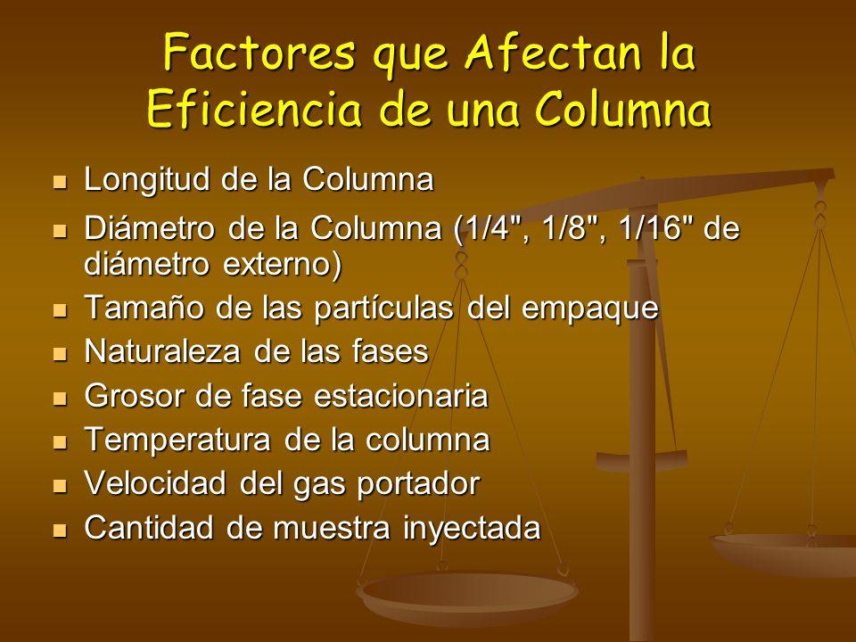 Factores que Afectan la Eficiencia de una Columna