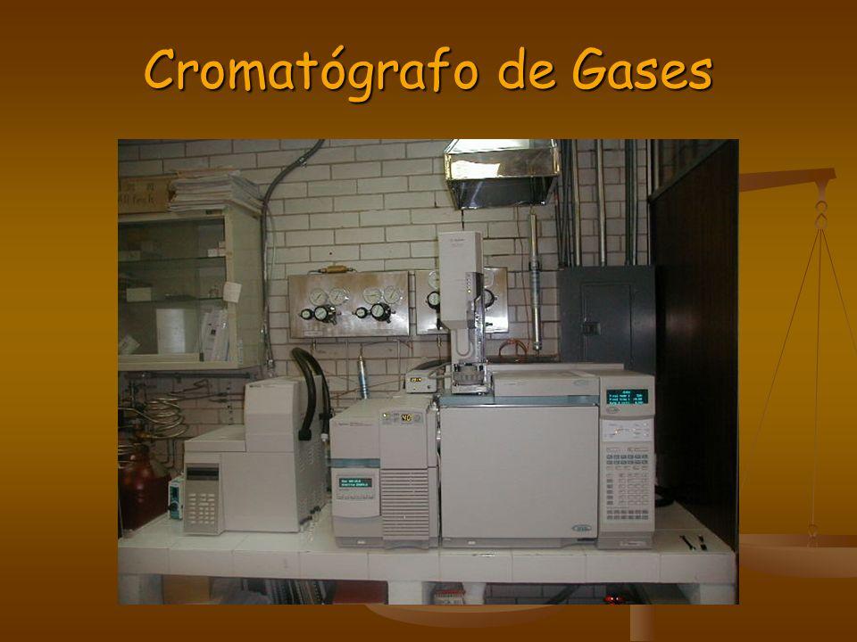 Cromatógrafo de Gases