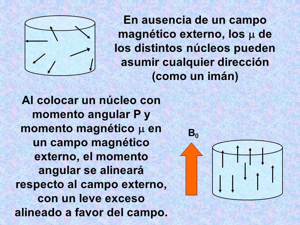 En ausencia de un campo magnético externo, los  de los distintos núcleos pueden asumir cualquier dirección (como un imán)