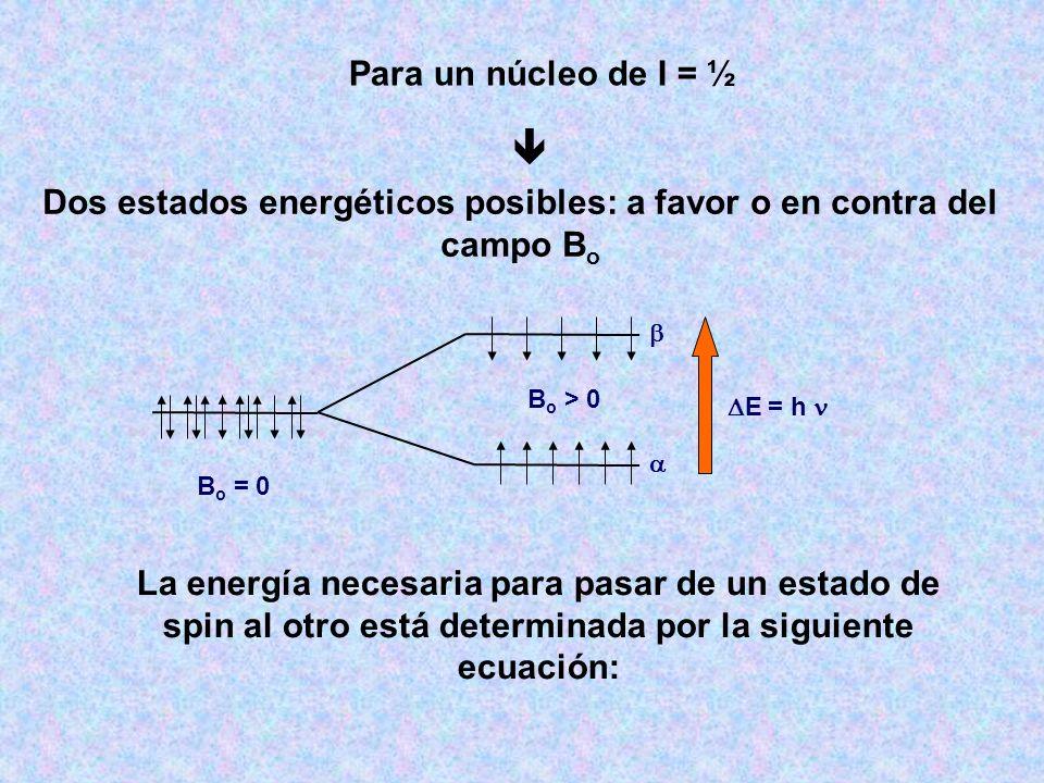 Dos estados energéticos posibles: a favor o en contra del campo Bo