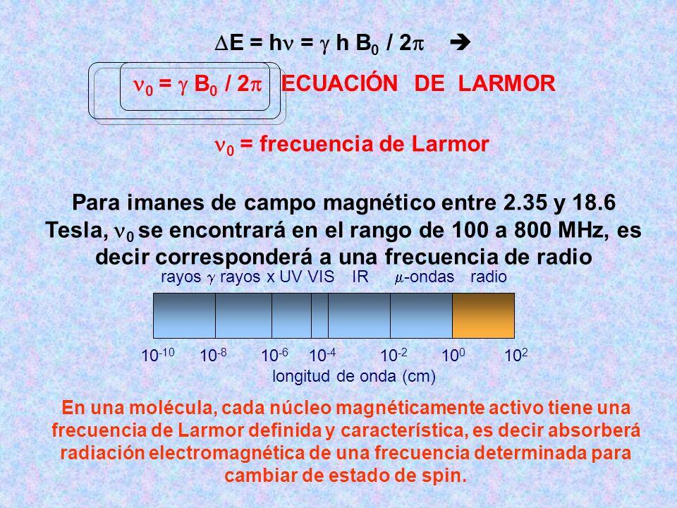 0 =  B0 / 2 ECUACIÓN DE LARMOR 0 = frecuencia de Larmor