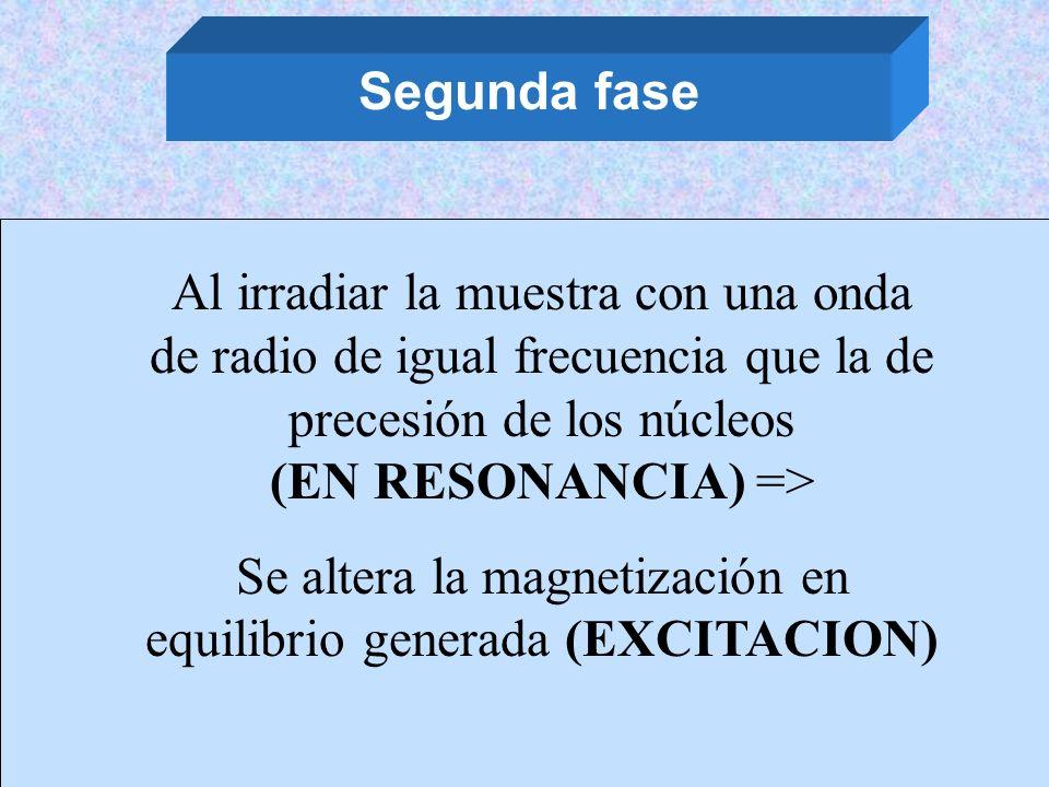 Se altera la magnetización en equilibrio generada (EXCITACION)