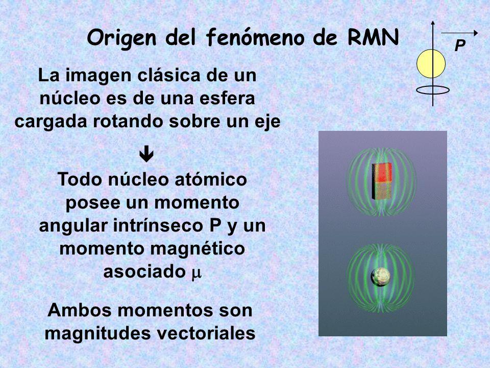 Origen del fenómeno de RMN Ambos momentos son magnitudes vectoriales