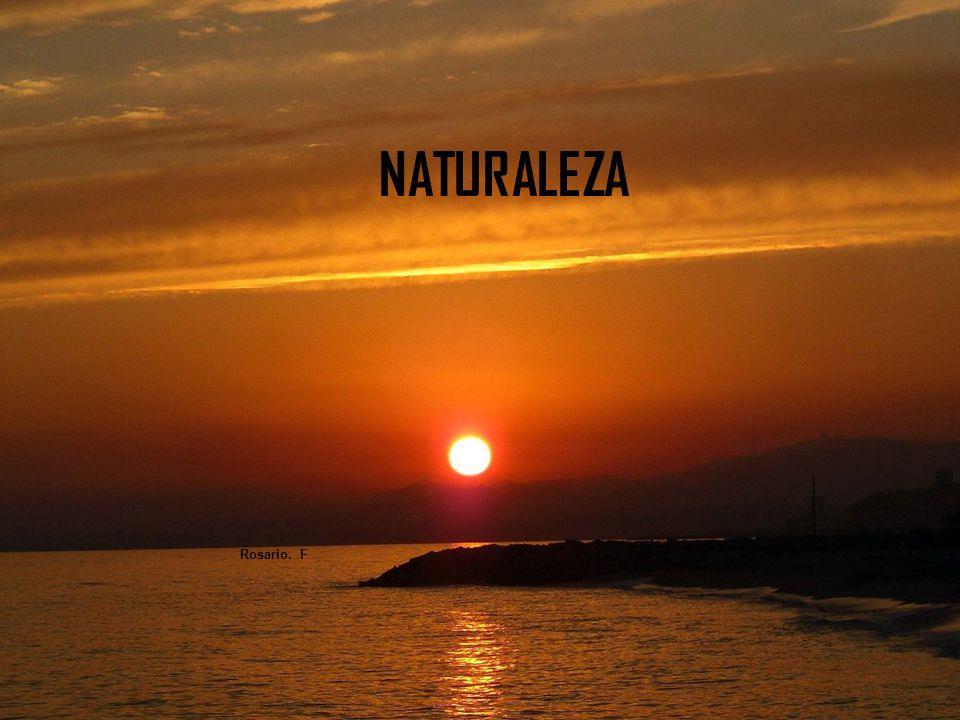 NATURALEZA Rosario. F