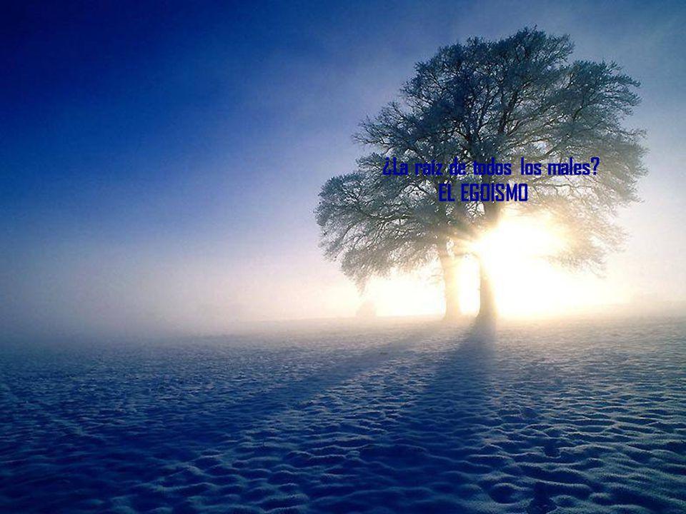 ¿La raíz de todos los males