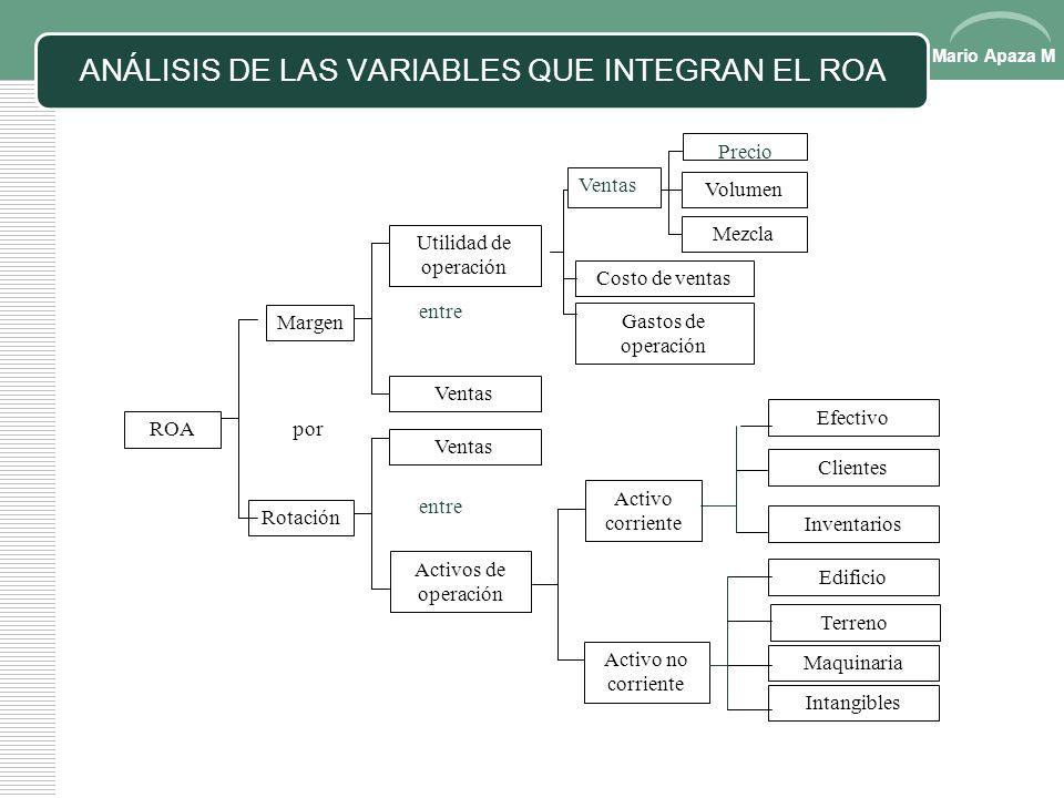 ANÁLISIS DE LAS VARIABLES QUE INTEGRAN EL ROA