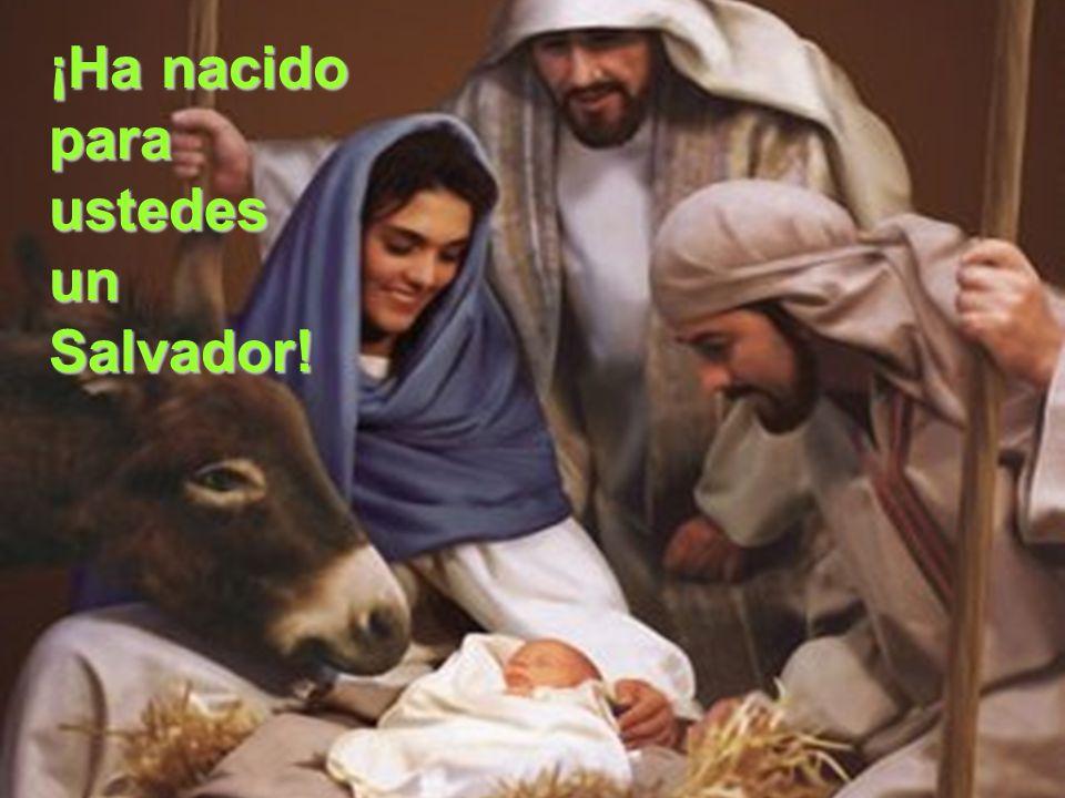 ¡Ha nacido para ustedes un Salvador!