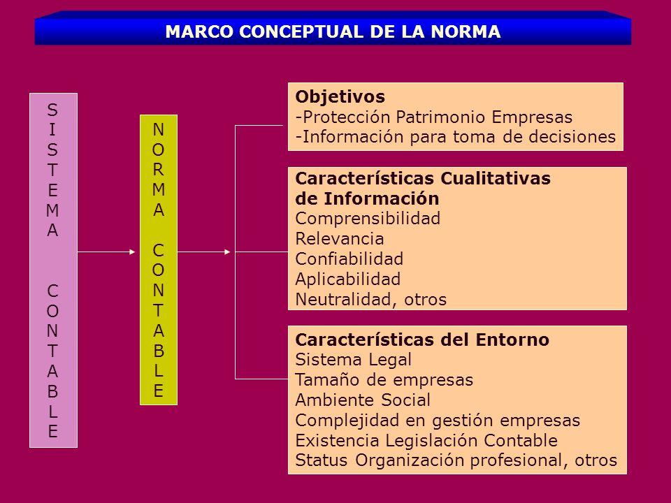 MARCO CONCEPTUAL DE LA NORMA