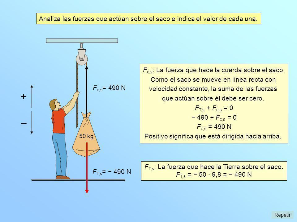 Analiza las fuerzas que actúan sobre el saco e indica el valor de cada una.