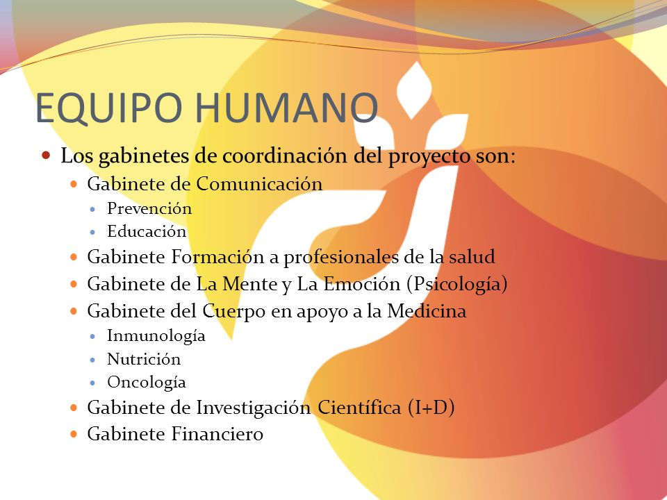 EQUIPO HUMANO Los gabinetes de coordinación del proyecto son: