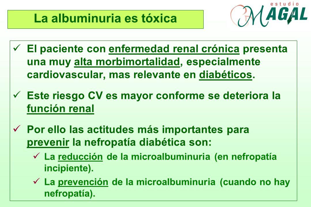 La albuminuria es tóxica