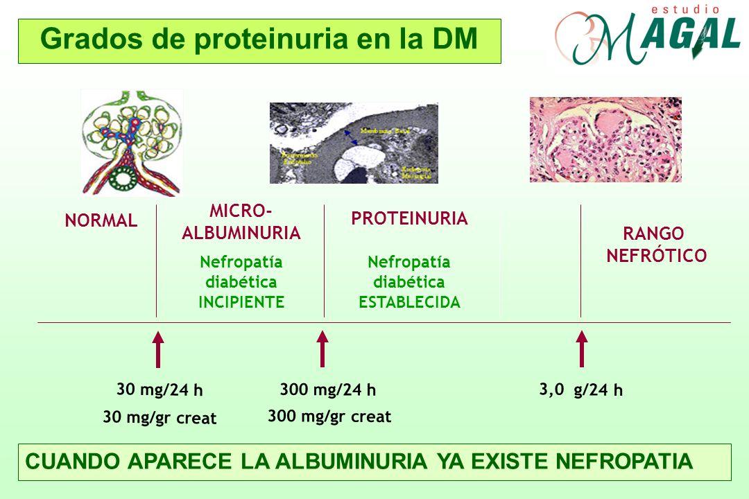Grados de proteinuria en la DM