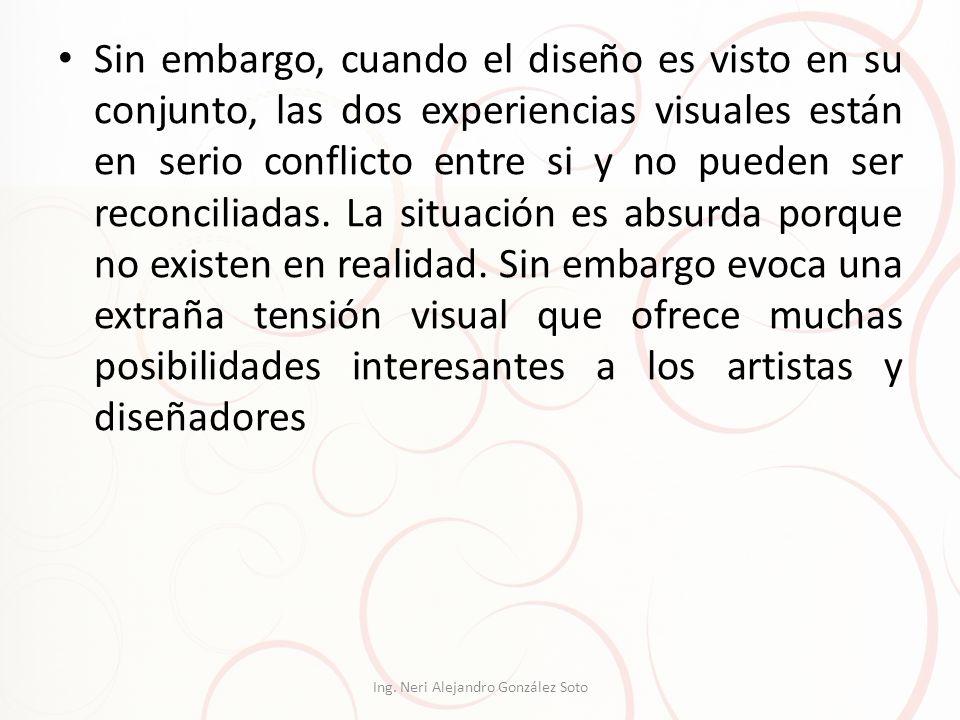 Ing. Neri Alejandro González Soto