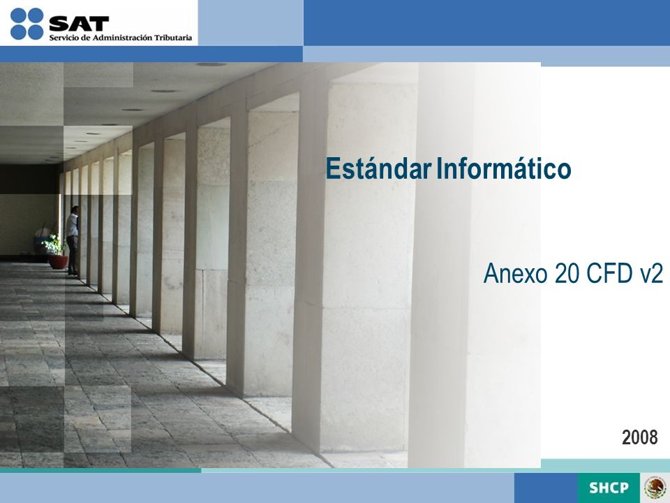 Estándar Informático Anexo 20 CFD v2 2008