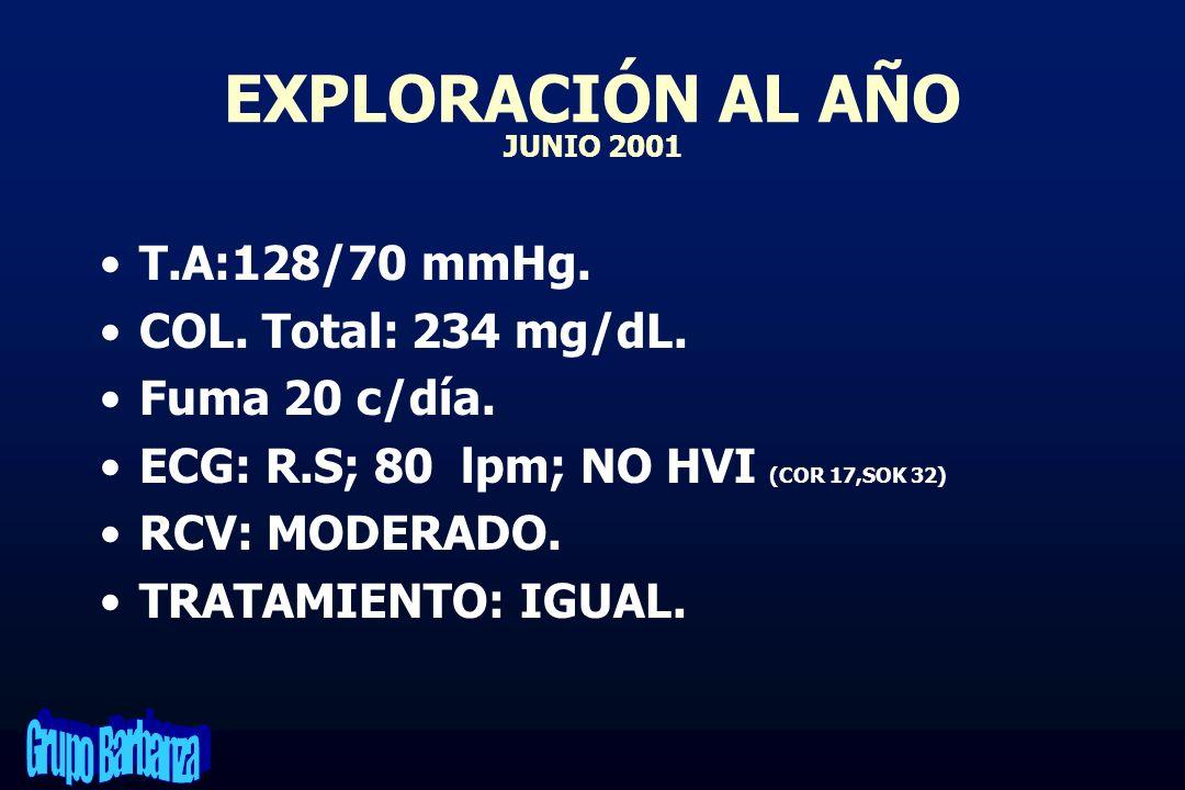 EXPLORACIÓN AL AÑO JUNIO 2001