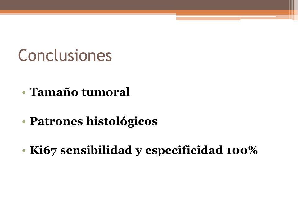 Conclusiones Tamaño tumoral Patrones histológicos