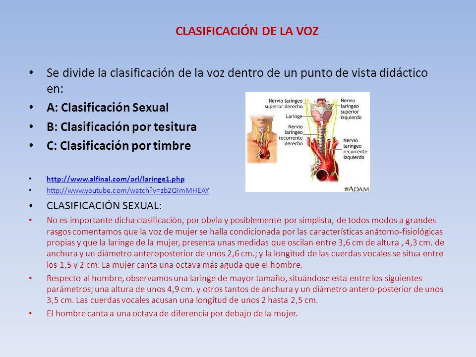 CLASIFICACIÓN DE LA VOZ